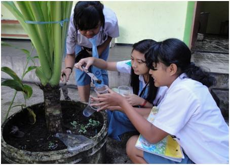 Gambar 1: Memanfaatkan lingkungan sekolah sebagai sumber belajar