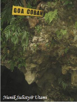 Mulut Goa Coban
